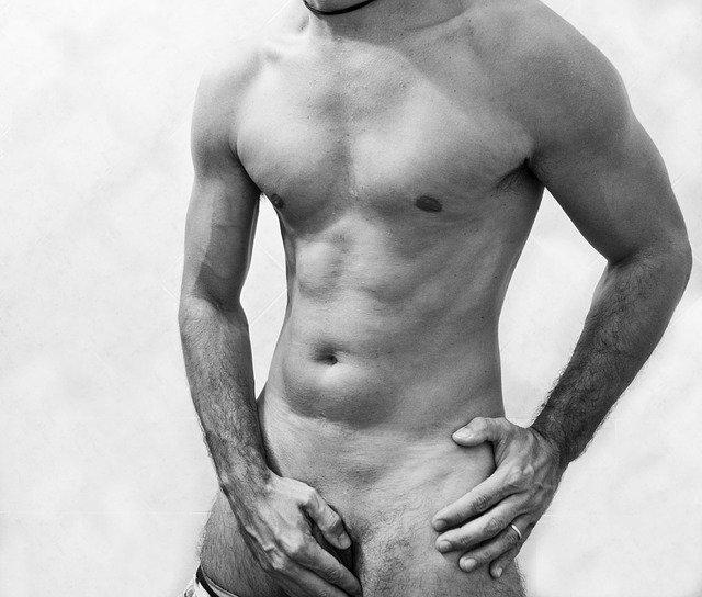 vypracované mužské tělo